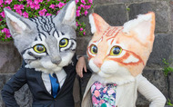 Gigantic Wearable Felt Cat Heads Now On Sale To Terrify Everyone With