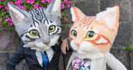 Giant wearable cat heads are now on sale and they are realistically creepy