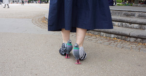 Japanese Designer Creates a Pair of Realistic Pigeon Shoes to Make Friends With the Local Birds